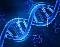 Base de dados de ADN conseguiu 8.139 amostras em sete anos
