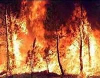 Bombeiros funcionários públicos sem dispensas ilimitadas na fase crítica dos fogos