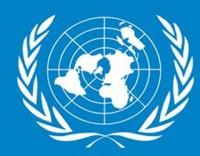 Portugueses já podem queixar-se à ONU se o Estado não respeitar os seus direitos