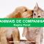 Animais de Companhia – Regime Penal