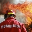 Parlamento aprova regime excecional para bombeiros voluntári...